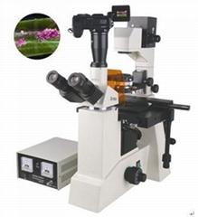 FM-50研究型熒光顯微鏡