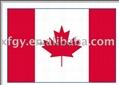 national flag 4