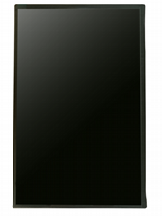 IVO M101NWWB R3