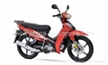 China Crypton Cub scooter 105cc, 110cc
