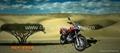 Dual purpose trail bike 250cc