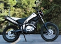 dirt bike tricker 250
