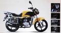 2015 new China motorcycles motos