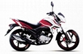 2015 new street motorcycle 150cc