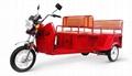 Hybrid Taxi Rickshaw Tuk Tuk