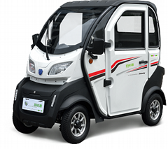 China  Electric Car, Bat (Hot Product - 1*)