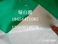 綠白膜食菌種大棚膜香菇膜 3