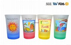Colourful Shot Glass