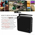 Beelink M18 Amlogic S905 4K 2GB /16GB android 5.1 TV BOX 2.4G/5G Dual Band WIFI