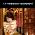 Universal Portable Bluetooth Wireless Microphone/Speaker/KTV Karaoke Handheld Mi 12