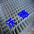 河南电焊网片 5