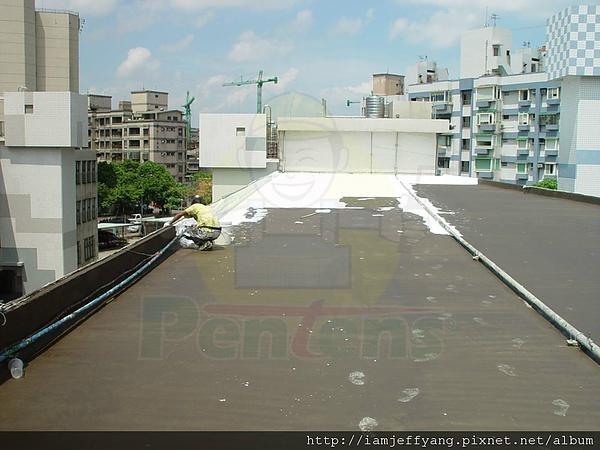 Roof Waterproofing Membrane 2