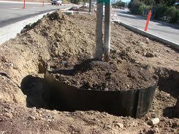 Root Barrier 1