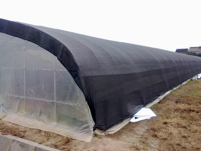 屋顶防晒网 1
