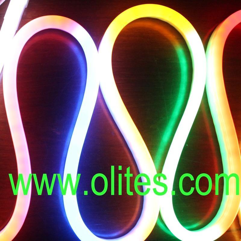 12v 24v 120v 240v flexible led neon rope light ol nf 24v olites china manufacturer. Black Bedroom Furniture Sets. Home Design Ideas