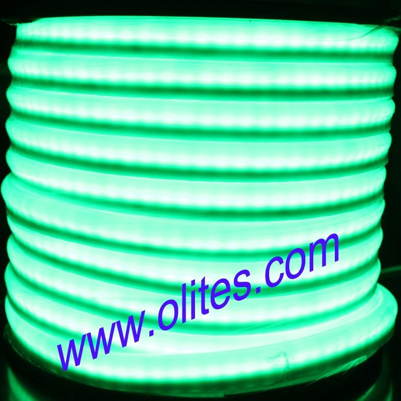 12v 24v 120v 240v flexible led neon rope light ol nf 24v 12v 24v 120v 240v flexible led neon rope light 3 mozeypictures Images