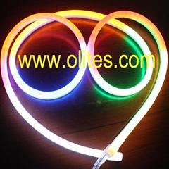 24V 120V 220V Round 360 Degree Flex LED Neon Rope Light
