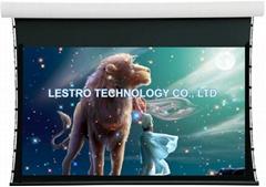 原厂直供  豪华电动拉线幕 电动投影幕  CE和ROHS认证