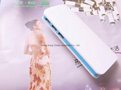 Power Bank USB External