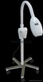 TE800 vertical teeth whiten machine