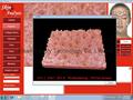 Newest 3D 5.0M High resolution Portable Skin Analyzer