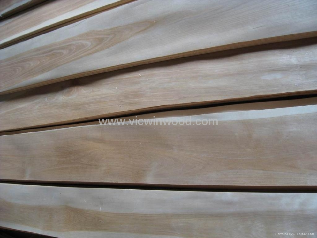 China Birch Wood Veneer With Discoloration Vw 015