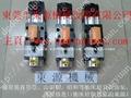 原裝臺灣肯岳亞超負荷油泵KINGAIR LS-257 3