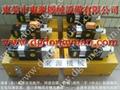 原裝臺灣肯岳亞超負荷油泵KINGAIR LS-257 5