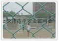 天津护栏网隔离网 5
