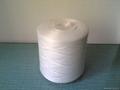 polyester yarn on dyeing cone