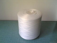 polyester yarn on dyeing cone