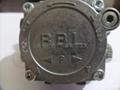 利雅路燃烧器专用油泵 3
