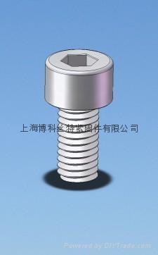 內六角圓柱頭塑料螺絲 1