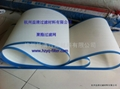 polyester squire wire mesh  2