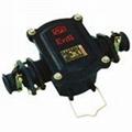 隔爆型电缆接线盒 1
