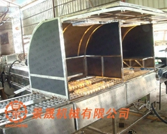 Egg Optical inspection machine