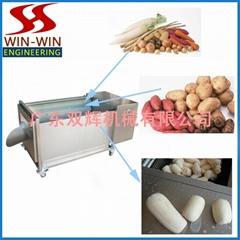 DST-8萝卜清洗机,土豆清洗机,瓜果清洗机