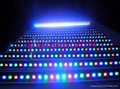 full color 30W LED wall washer lamp with DMX512 controller
