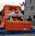 Inflatable slide tiger