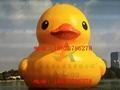 充气大黄鸭,香港大黄鸭,水上大黄鸭,超大闭气大黄鸭 3