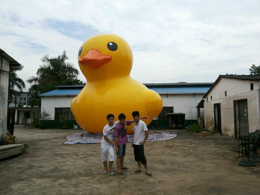 充氣大黃鴨,香港大黃鴨,水上大黃鴨,超大閉氣大黃鴨 5