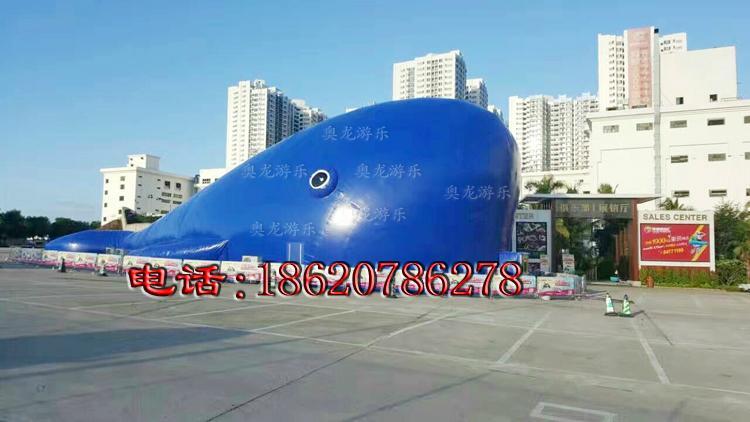 充氣大鯨魚,百萬海洋球池鯨魚帳篷,充氣鯨魚帳篷 3
