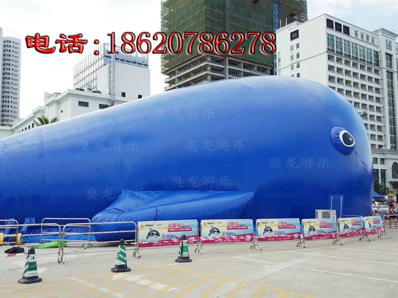 充气大鲸鱼,百万海洋球池鲸鱼帐篷,充气鲸鱼帐篷 5