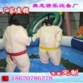 趣味運動相撲