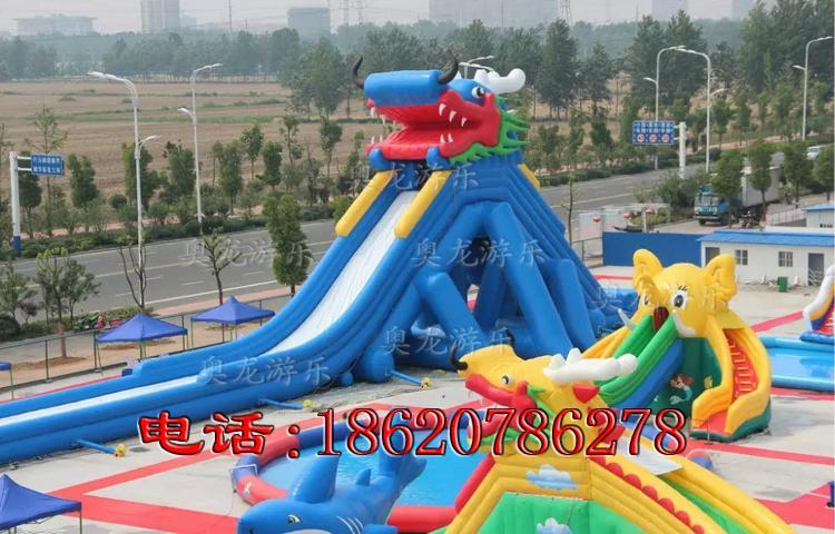 充氣大型龍頭水滑梯 3