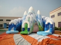 Inflatable water slides the ice world 4