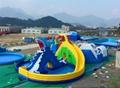 Inflatable dragon shark water slides 6