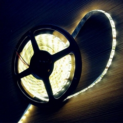 Single color 5050 SMD  flexible led strip light