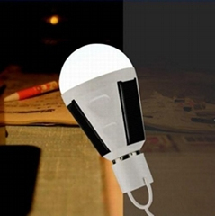 Portable solar emergency bulbs