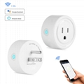 Mini smart socket Alexa